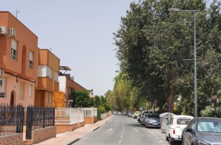 El Ayuntamiento de Lorca fumigará la Avenida Virgen de las Huertas para evitar plagas